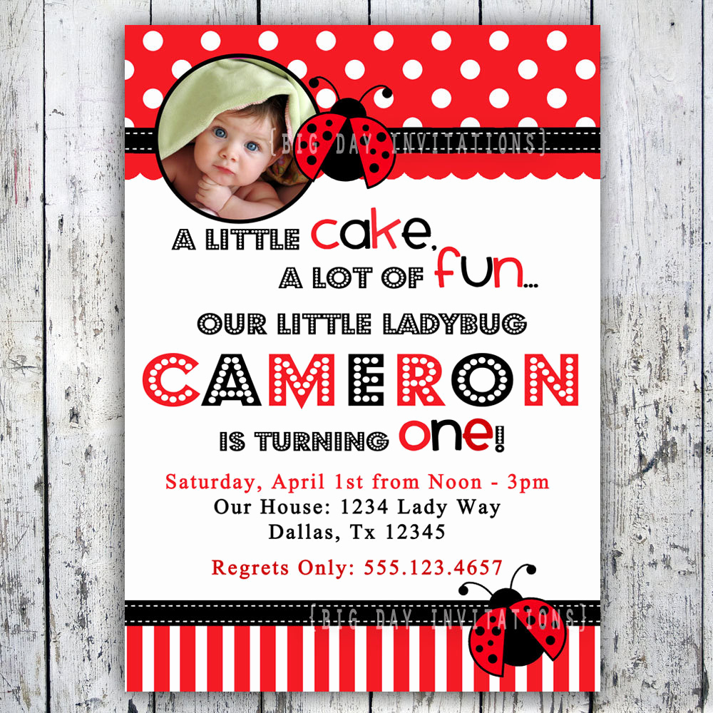 1st Birthday Invitation Wording Beautiful Ladybug Birthday Invitation 1st Birthday by Bigdayinvitations