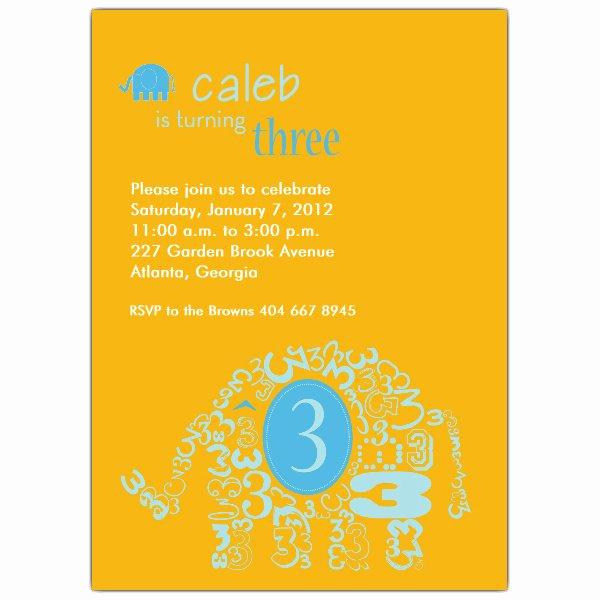 3rd Baby Shower Invitation Wording Unique Elephant Boy 3rd Birthday Invitations