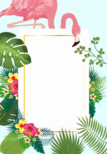 Blank Luau Invitation Borders Best Of Flamingo Tropical Invitation Card Free Stock