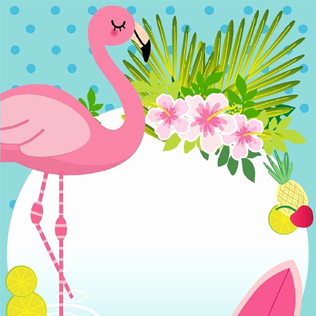 Blank Luau Invitation Borders Luxury Flamingo Flamingos Pinterest