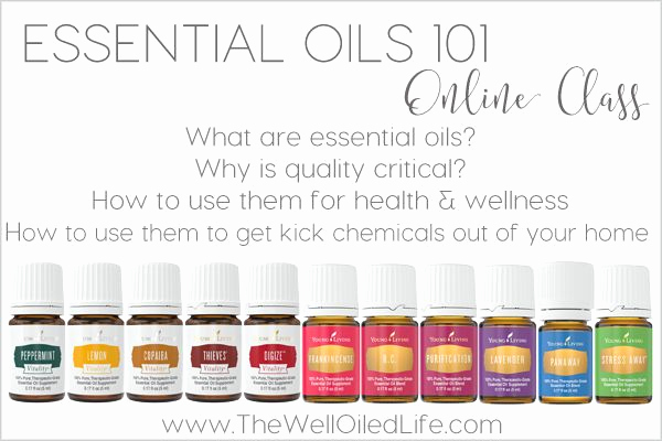 Essential Oils Class Invitation Fresh 330 Best Images About Young Living Essential Oils On