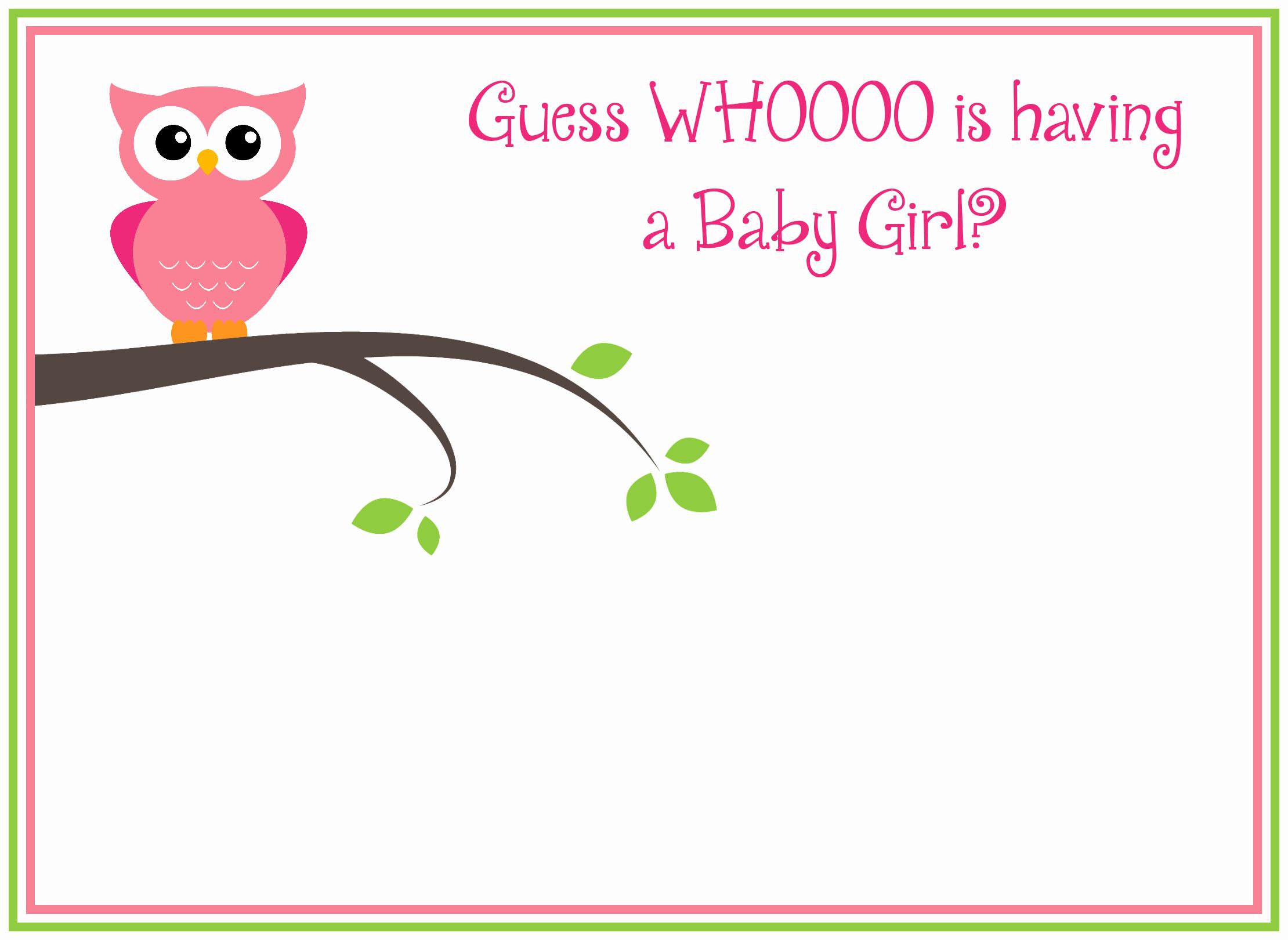 Girl Baby Shower Invitation Unique Babyshowerowlinvitationforgirls 2220×1620