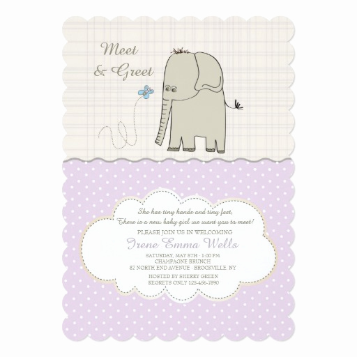 Meet and Greet Invitation Beautiful Meet & Greet Baby Girl Invitation