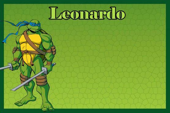Ninja Turtles Invitation Template Luxury Teenage Mutant Ninja Turtle Bday Invitation