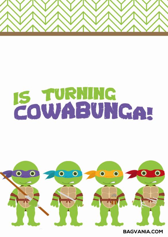 Ninja Turtles Invitation Template New Free Printable Ninja Turtle Birthday Party Invitations