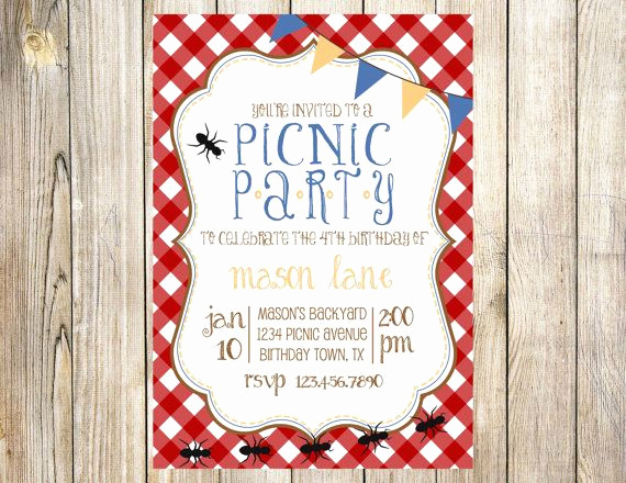 Picnic Invitation Templates Free Elegant Picnic Birthday Party Invitation by Emmyjosparties On Etsy