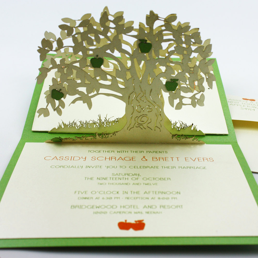 Pop Up Invitation Card Best Of Amazing Wedding Invitation Pop Up Card Invites 1