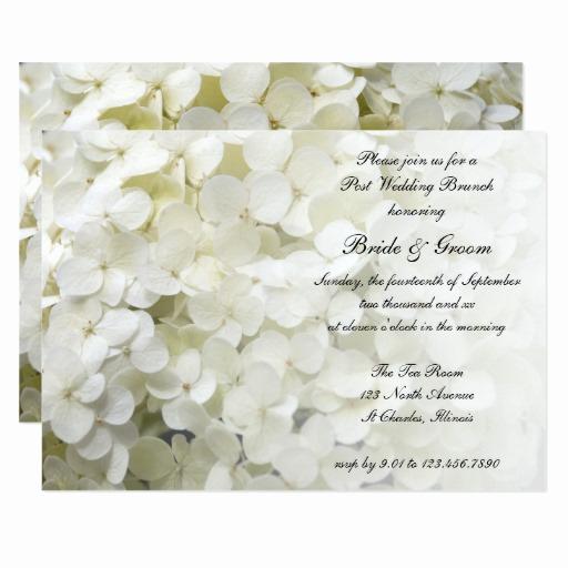 Post Wedding Shower Invitation Wording Fresh White Hydrangea Floral Post Wedding Brunch Invite