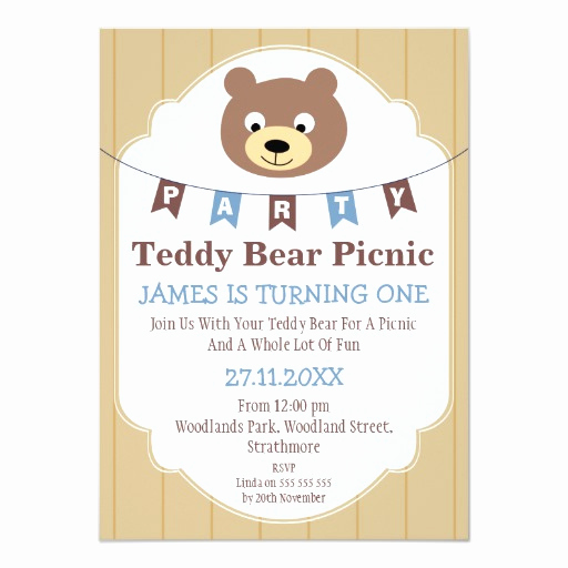 Teddy Bear Picnic Invitation Lovely Boys Teddy Bear Picnic 1st Birthday Invitation