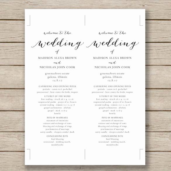 Wedding Invitation Templates Word Inspirational Wedding Program Template – 41 Free Word Pdf Psd
